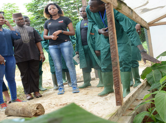 Viable strategy to transform the agriculture