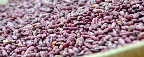 iron beans