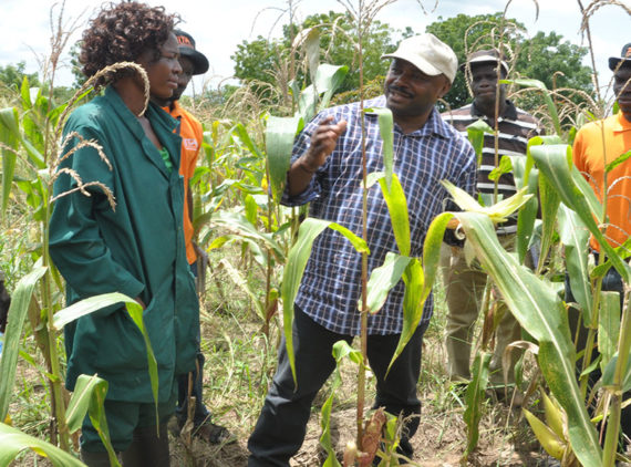Grooming young people in agribusiness